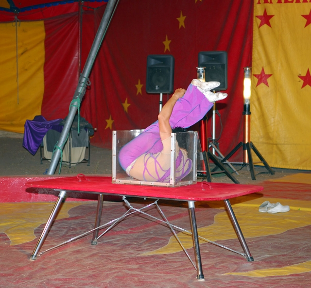 The audience at the weekend circus sponsored by the Fillmore Rotary Club witnesses a high cage act, Sunday evening. Kids were admitted free of charge. A great time was had by all.