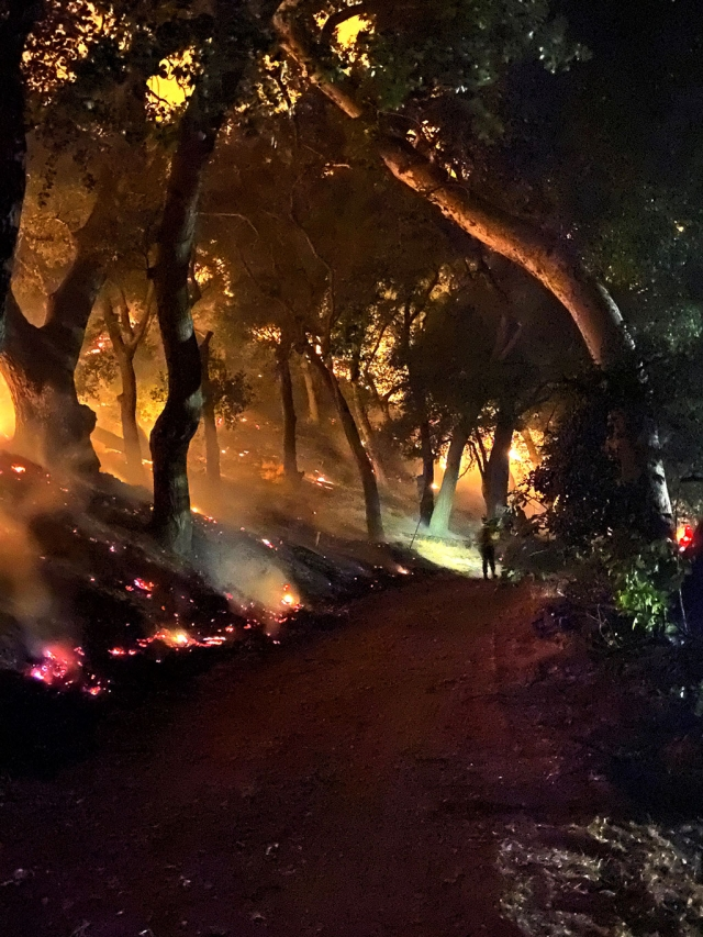 This photo was taken by a firefighter at the Hathaway Gate between Lake Piru and Hasley Canyon.