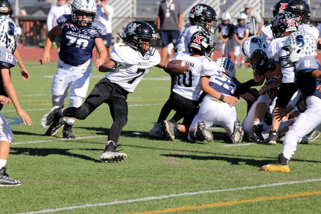 Fillmore Raiders Mighty Might Black #7 runs the ball up the filed in Saturdays game against Saugus Navy. Raiders beat Saugus 24-12, and will play the SC Wildcats November 11th 8am at Royal High School. Photos courtesy Crystal Gurrola.