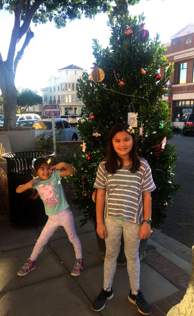 It's time again to decorate Central Avenue for the holidays! Last year Jenna and Heather Furness stopped to enjoy one of the many decorated Christmas trees lining Central Avenue. School children, local clubs and groups, churches, businesses and families are all invited to choose a tree to decorate. Show that the Christmas Spirit is still alive and well in Fillmore - the last, best, small town in California. Now go decorate a tree!