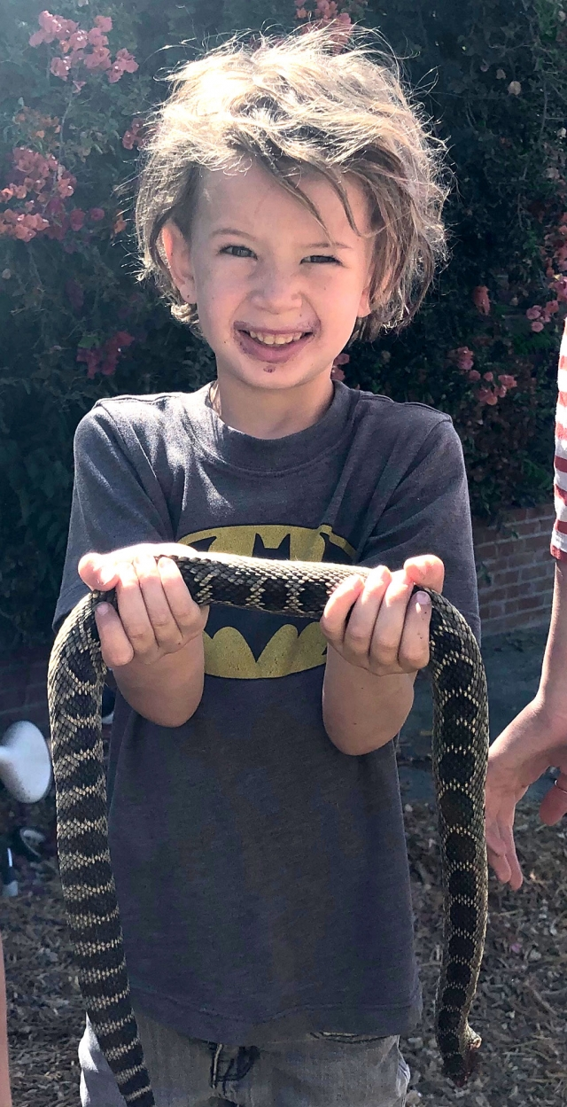 Joseph Fike, 5, who is brave enough to handle the large deadly snake.