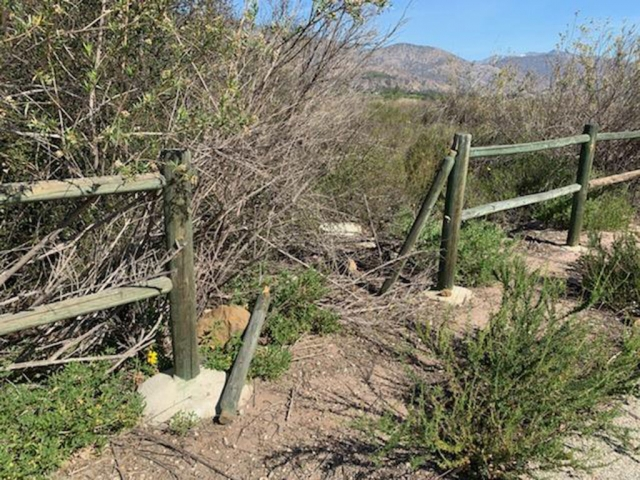 Fillmore's scenic bike paths are in need of repair. Vandals have damaged the wood posts along the path to the north of the City's water reclamation plant and running along the east side of the Sespe River heading into north Fillmore. Graffiti, trash and canine waste are also a problem along the paths.