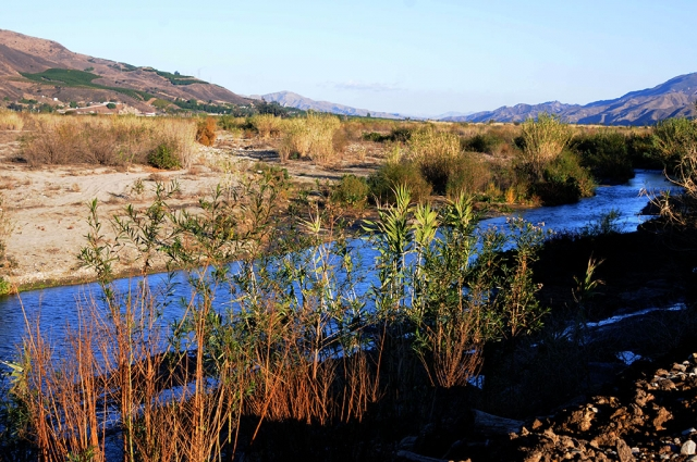 The Santa Clara River is flowing more than usual after Fillmore got a much need rain this past Monday, December 28th.