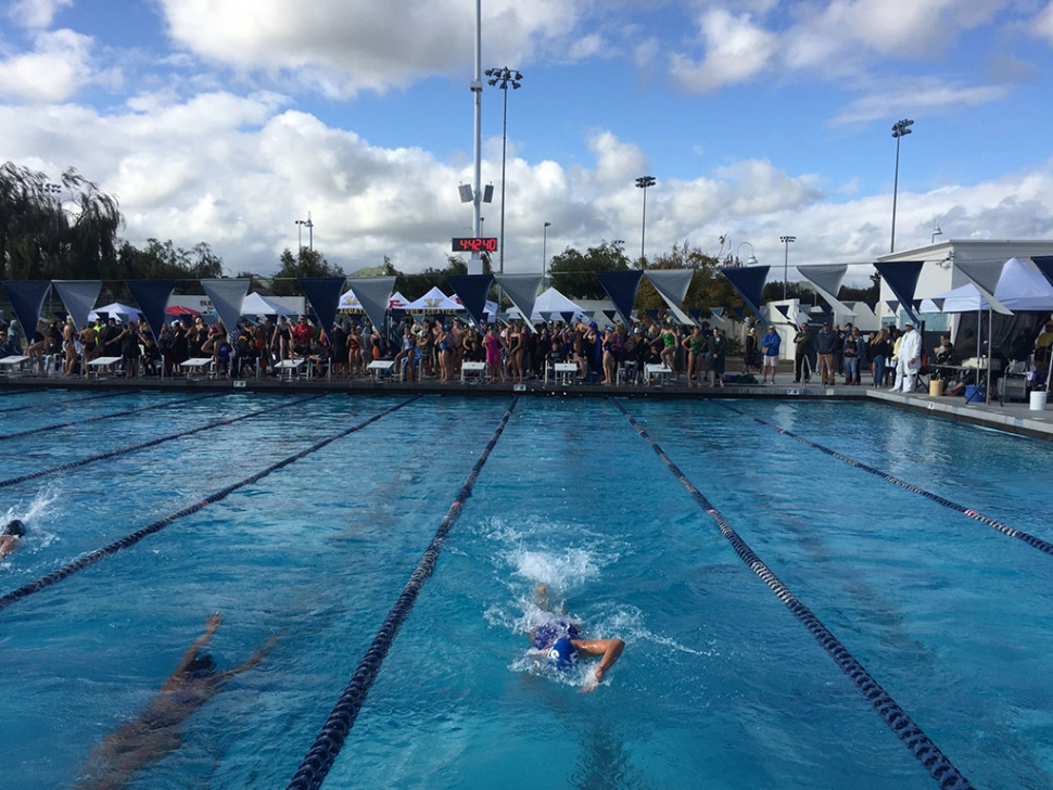 Last week the FHS Swim Team competed at the Ventura County High Swim Championship. Pictured are some Flashes in the midst of their race while their teammates cheer them on. Photo courtesy Katrionna Furness.